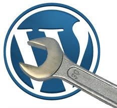 wp wordpress csm